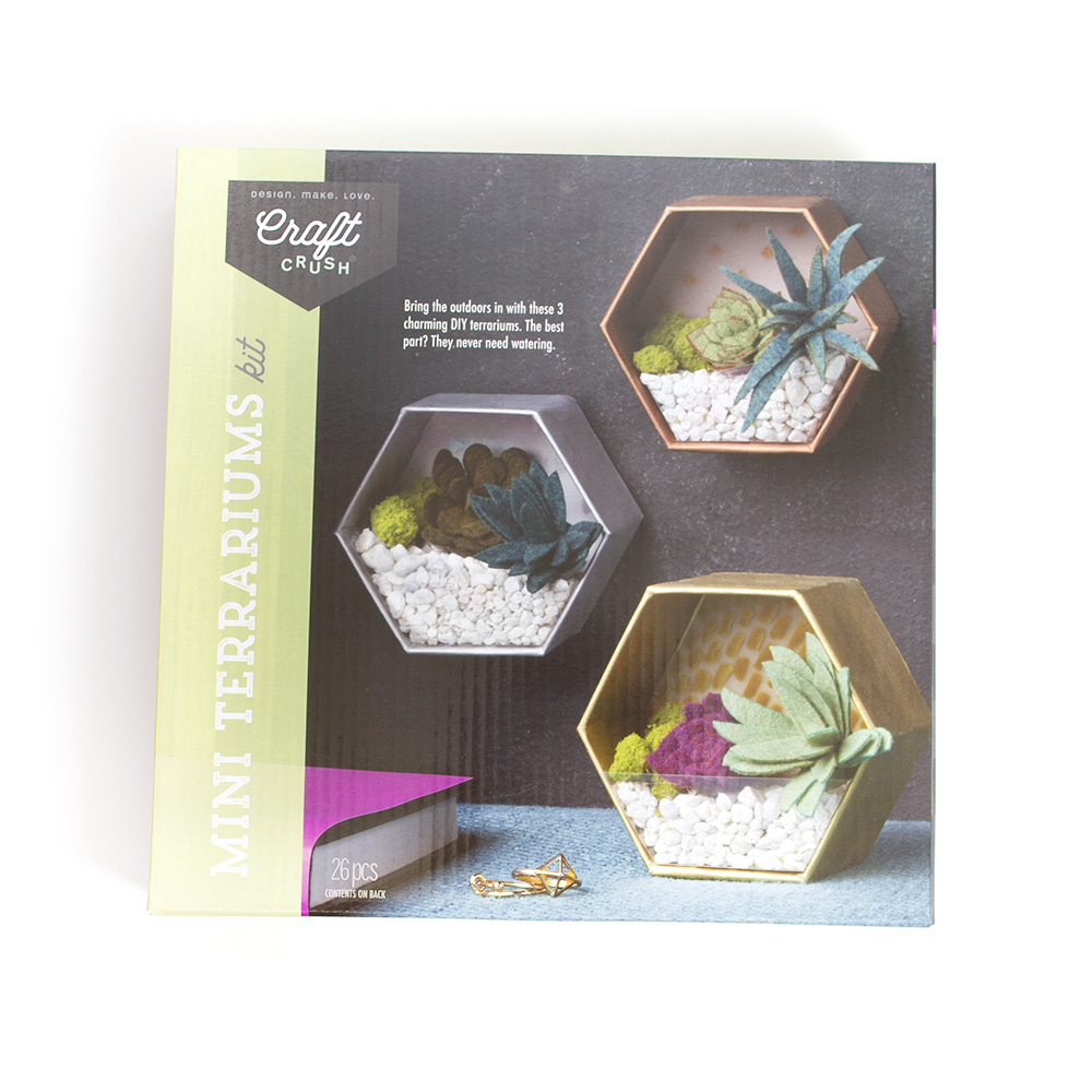 Ann Williams, Craft Crush, Mini Terrariums, Kit