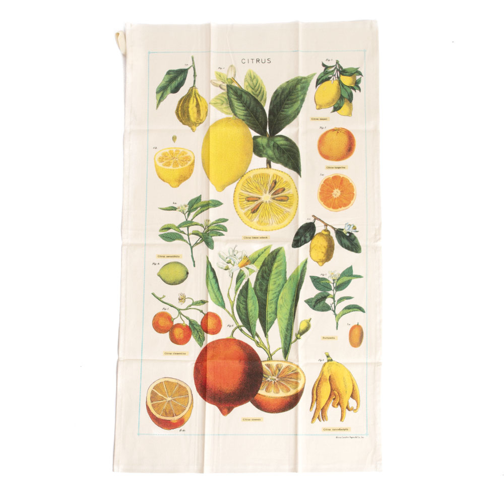 Cavallini, Cotton, Tea Towel, Citrus