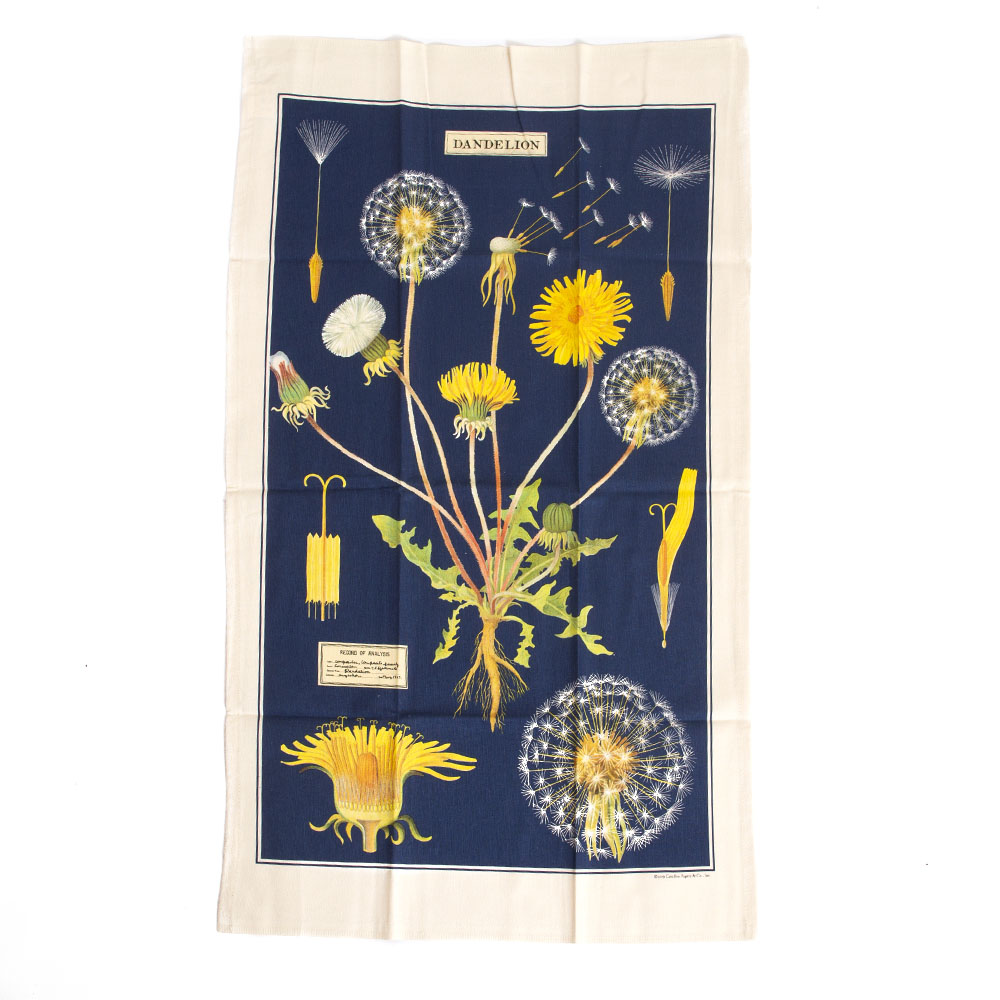 Cavallini, Cotton, Tea Towel, Dandelion
