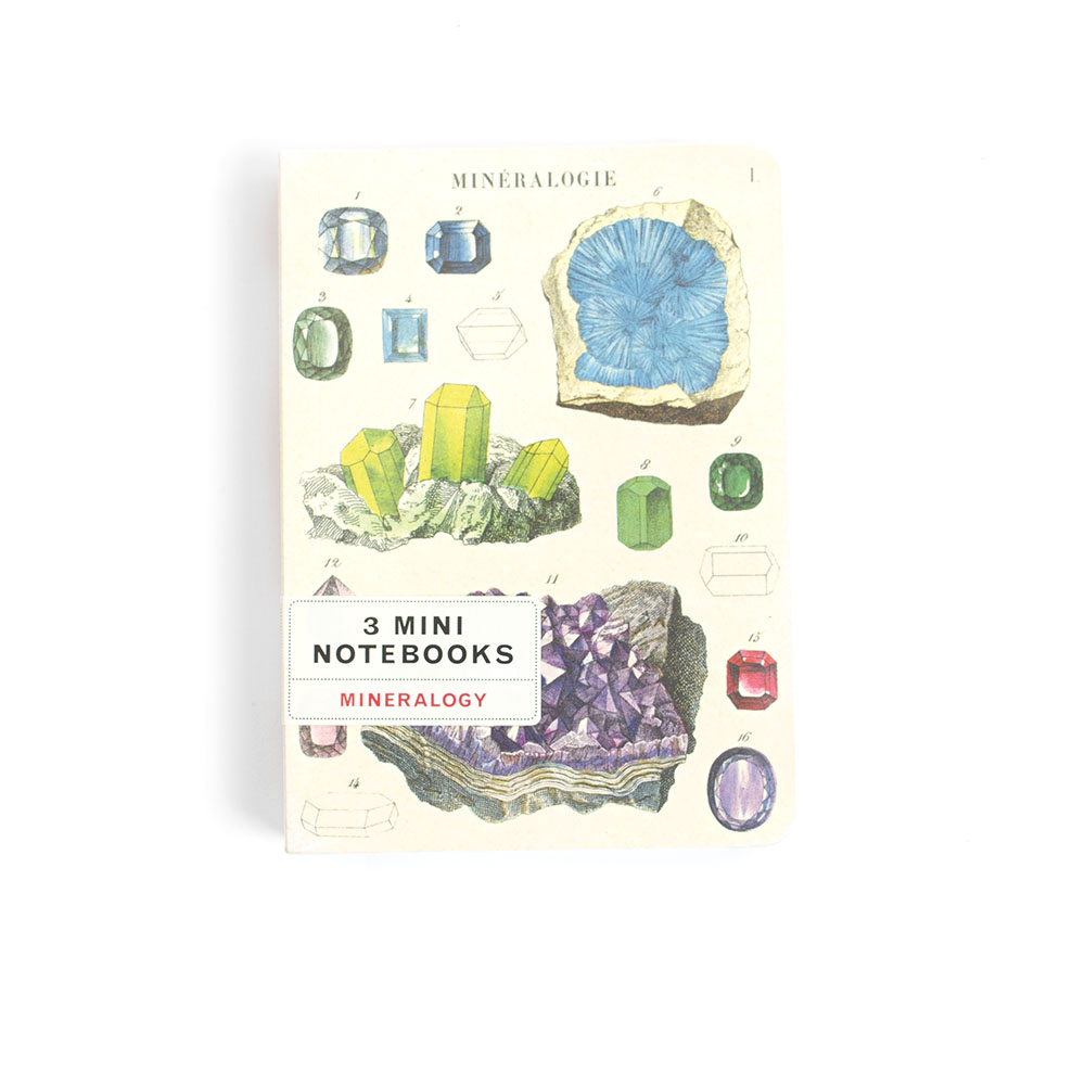 Cavallini, Mini Notebook, Mineralogy