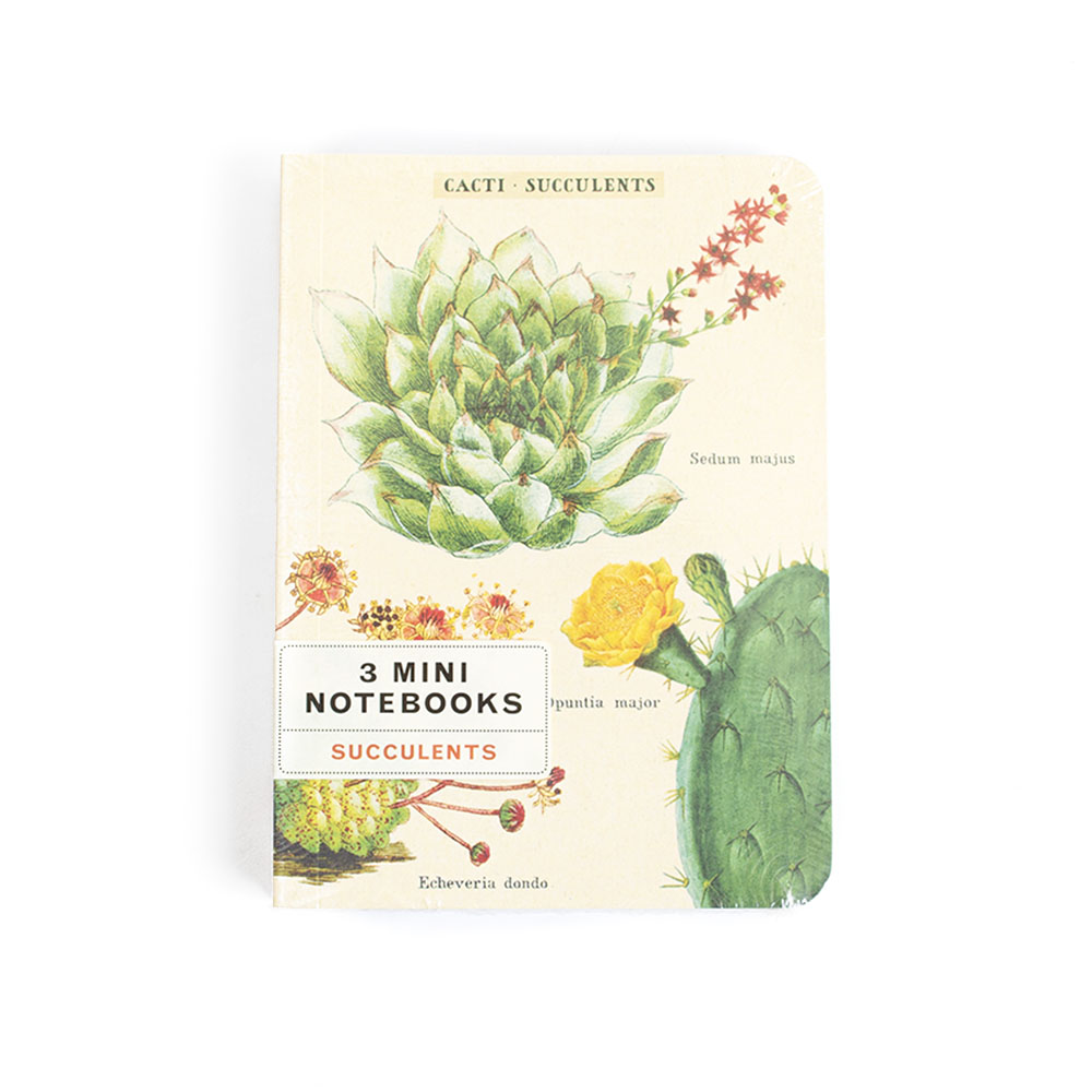 Cavallini, Mini Notebook, Succulents