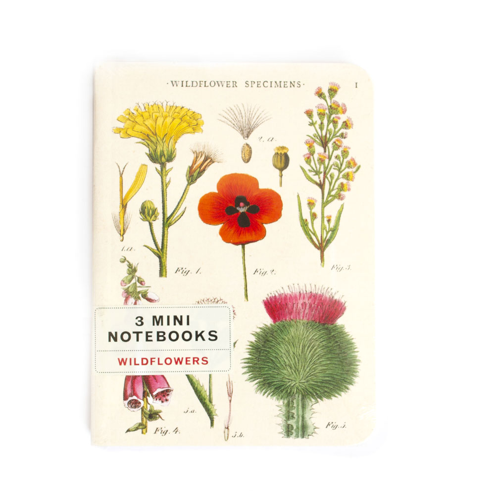 Cavallini, Mini Notebook, Wildflowers
