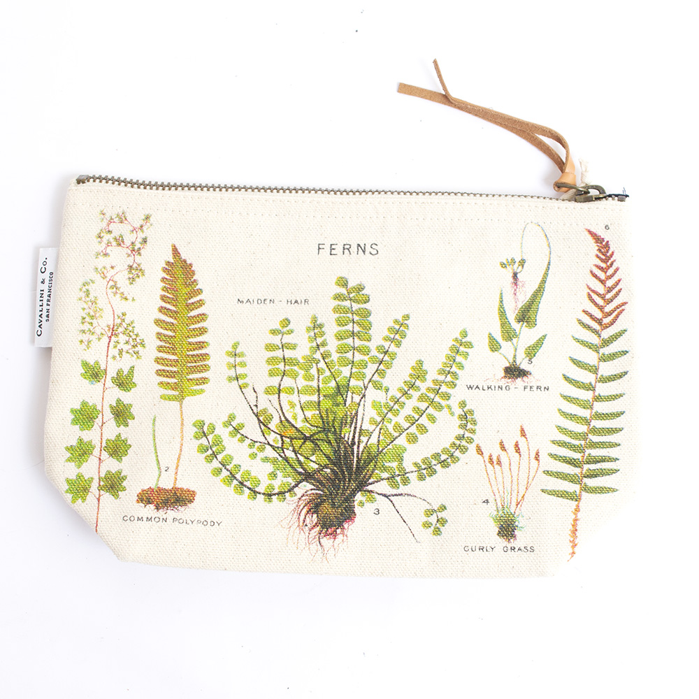 Cavallini, Cotton, Pouch, Ferns