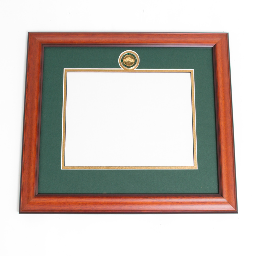 Elite Standard Diploma Frame Without Name Plate_Alder