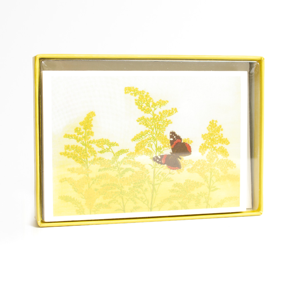 Pomegranate, Boxed Card Set, Bebb Goldenrod